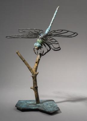Barbara Burzillo DragonFly